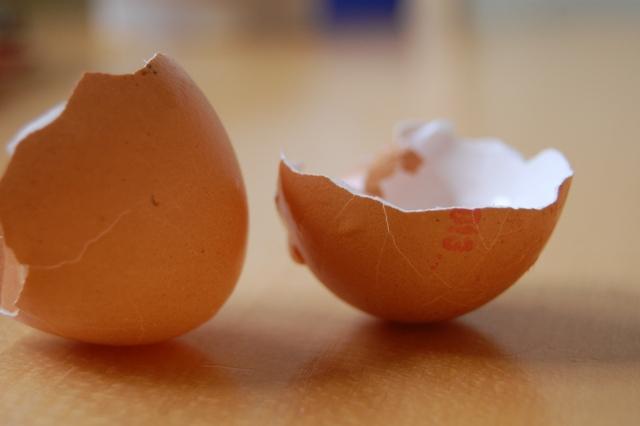 Eierschalen garten