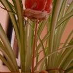 Holzstab in Blumentöpfen verrottet nicht mehr so leicht