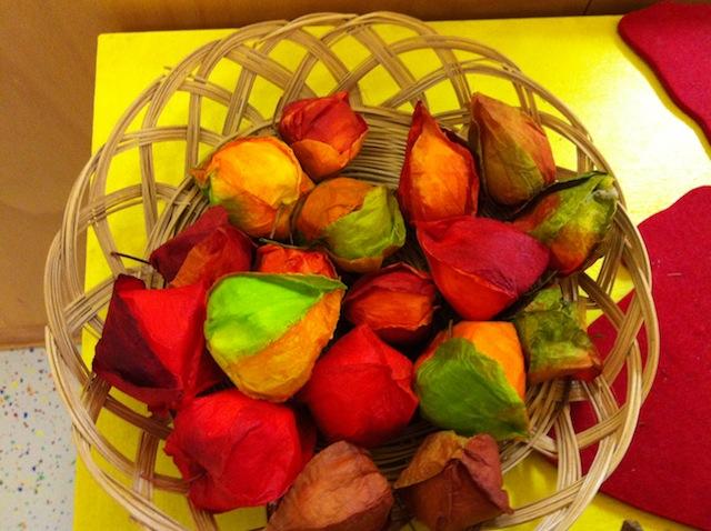 Physalis/Lampionblume für die Dekoration