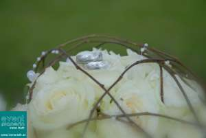 Hochzeitsringe auf Rosen