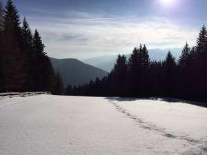 Lüsner Alm in Südtirol