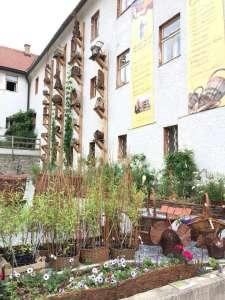 Klosterschulwerkstätten in Schönbach im Waldviertel