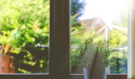 5 Tipps für saubere Fenster