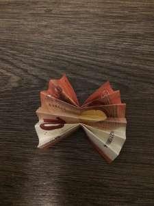 Geldgeschenk - Blüte aus Geldschein falten