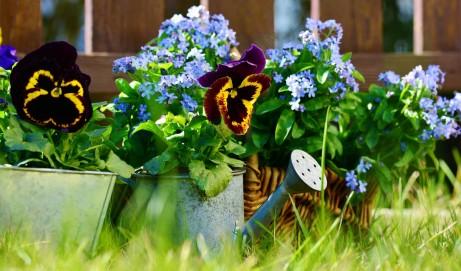 So bekommen Sie Ihren Garten fit für den Sommer