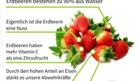 Die 5 wichtigsten Fakten zu Erdbeeren