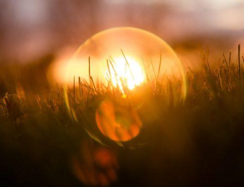 Urlaubsparadies Garten illuminiert mit trendigen Solar-Leuchtkugeln