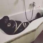 Halloween - Deko: Leiche in der Badewanne
