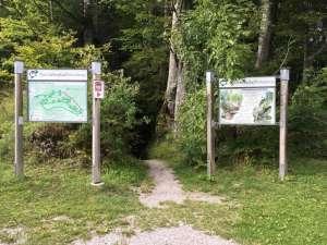 Naturlehrpfad - Annaberg - Wanderung mit Kindern
